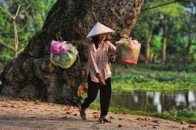 Ngân hàng Thế giới hạ dự báo tăng trưởng Việt Nam xuống 2%